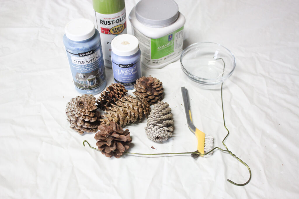 Supplies for painted pinecones5 Best Ways To Paint Pinecones