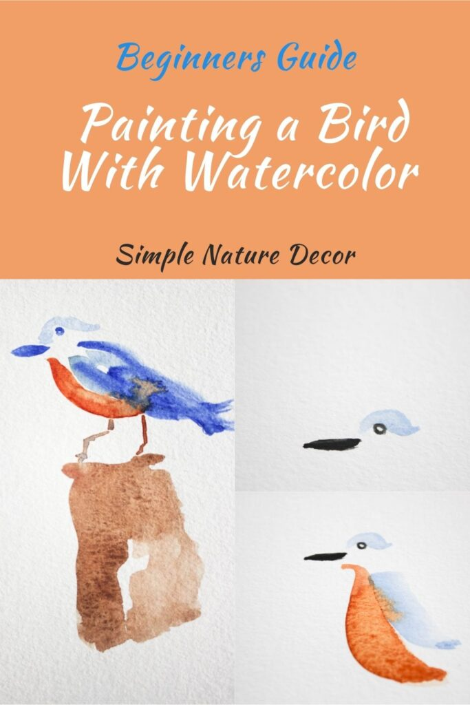 How To Paint A Bird With Watercolor