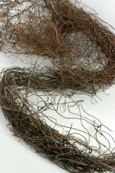 long angel hair vine for simple nature decor blog