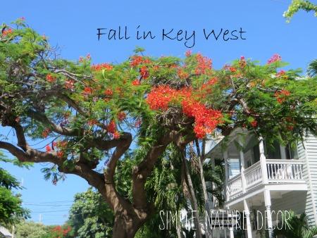 fall in key west