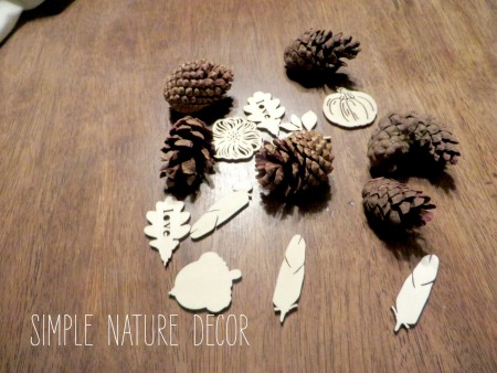 pine cones and mini wood pieces