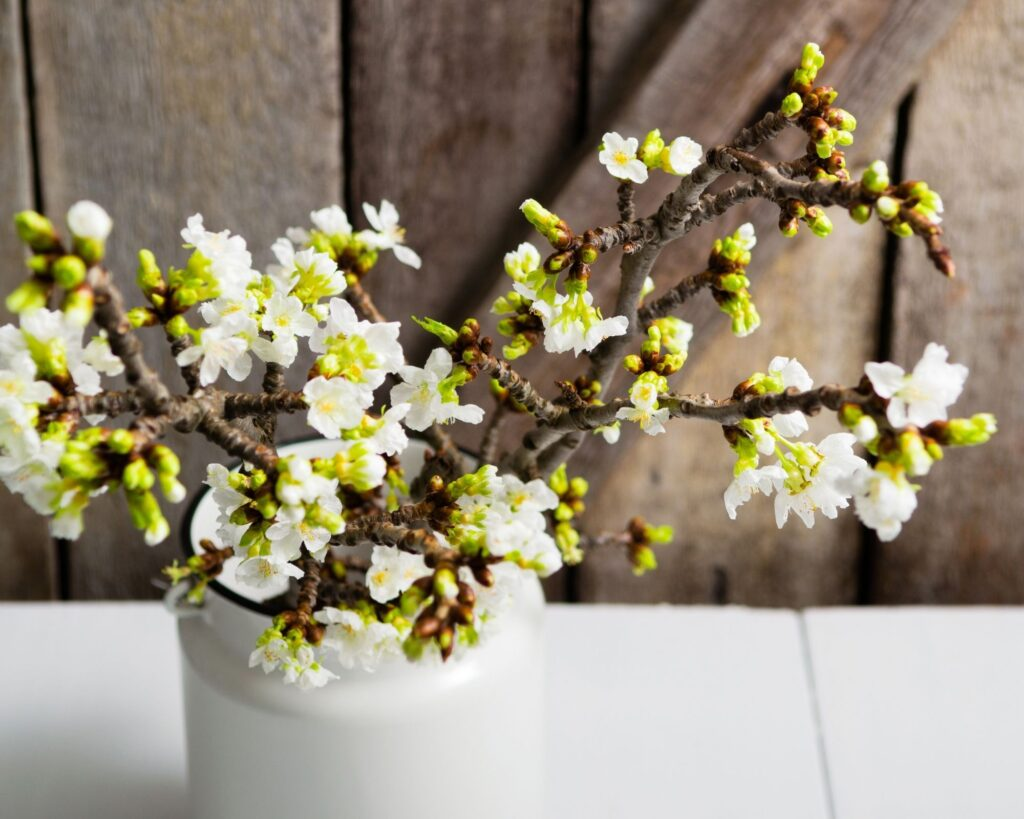 Cherry Blossom branches:decorating ideas with tree branches