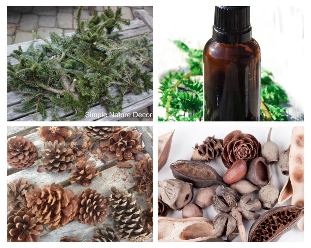 Material needed for potpourri:How To Make Fresh Scented Balsam Pine Potpourri