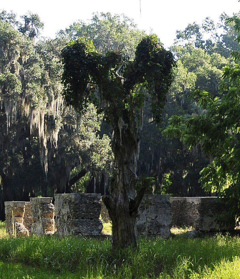 White Hall Plantation Ruins