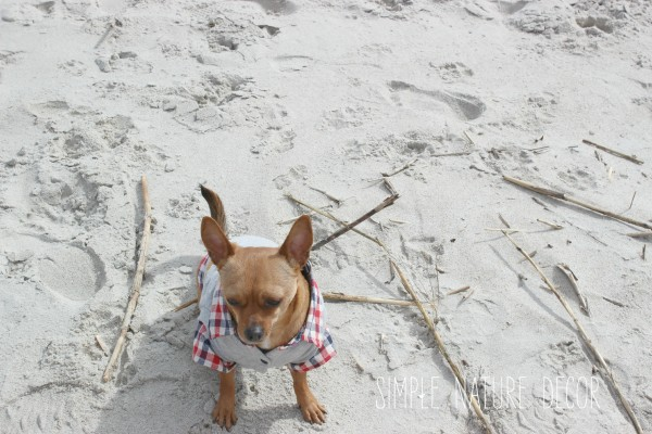 Easter on the beach: 5 Fun Ideas To Celebrate Easter On the Beach
