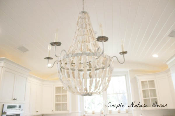 6 Oyster Shell Chandelier Ideas You Will Love