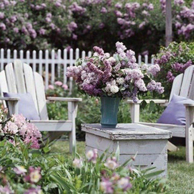 botanical lilac cottage