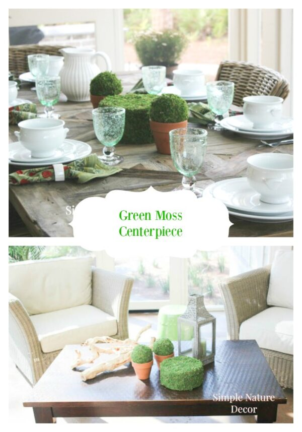 DIY Moss Covered Decor Ideas For Spring