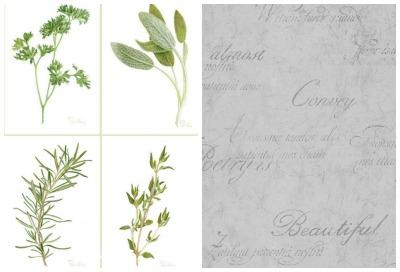botanicals and script