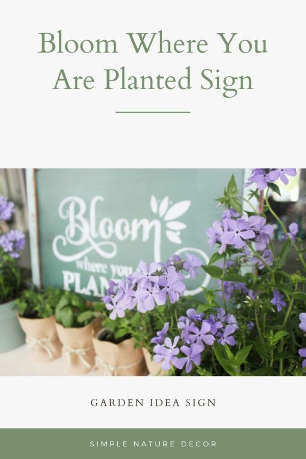 How To Stencil A Bloom Where You Are Planted Garden Sign