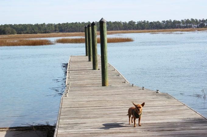 water tour home post luigi