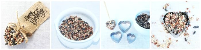 How to make bird seed party favors: How To Make Heart-Shaped Eco-Friendly Birdseed Party Favors