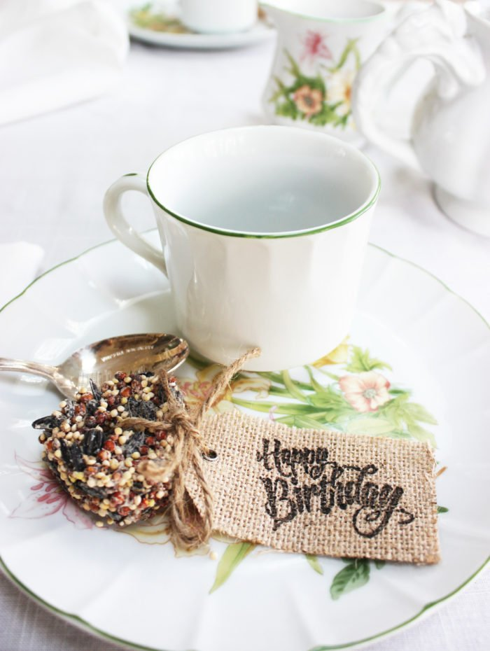 ECO FRIENDLY BIRDSEED PARTY FAVORS