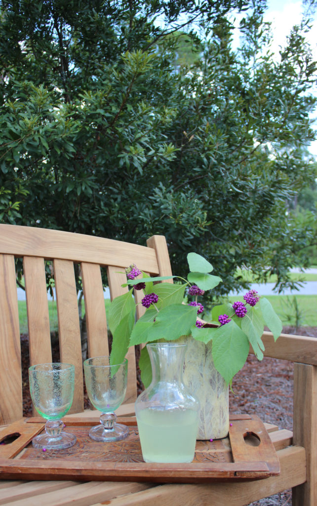 Beauty Berry:decorating ideas with tree branches
