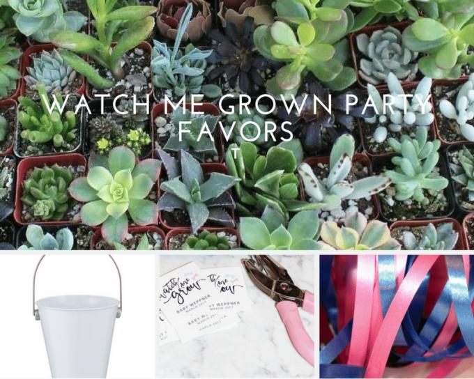 watch-me-grow