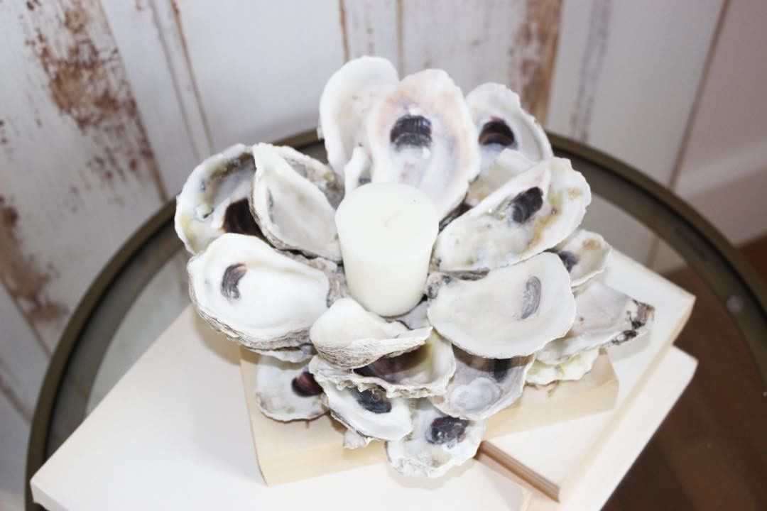Want to learn to make this Oyster Shell Candle Holderhellip