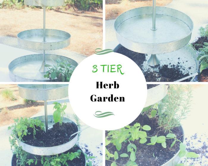 How To Create A Three-Tier Herb Garden Centerpiece