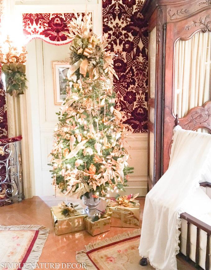 A Little Christmas Peekaboo at The Biltmore Estate