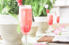 Indoor Garden Party Ideas+Raspberry Punch