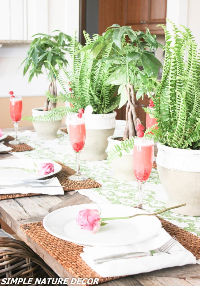 Indoor Garden Party Ideas Raspberry Punch Simple Nature Decor