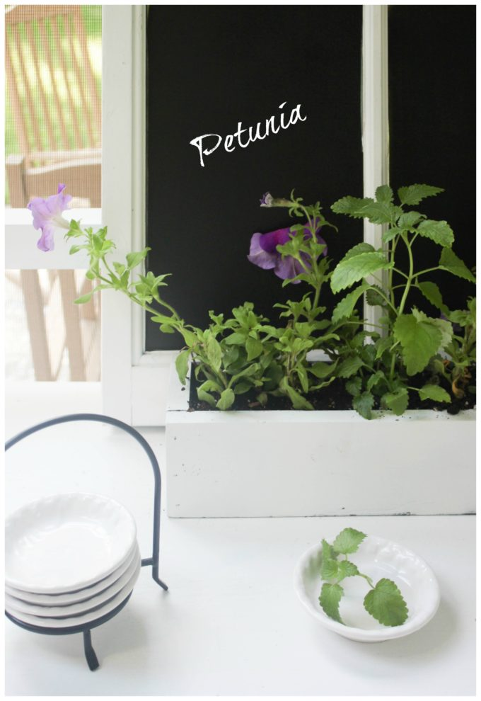How To Transform A Window Into A Chalkboard Garden Sign