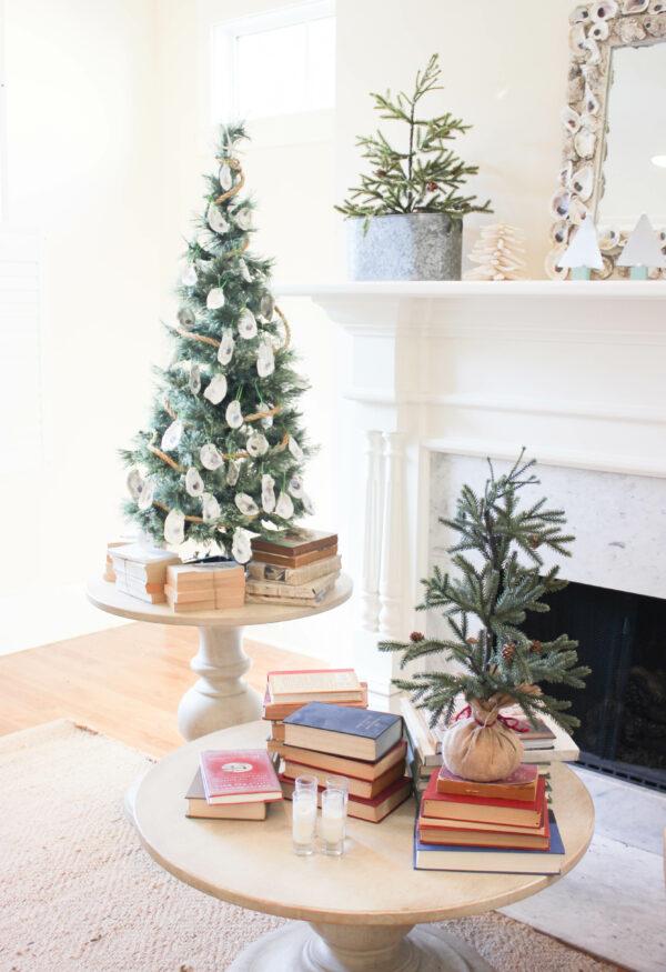 Christmas Tour of Homes-Coastal Style