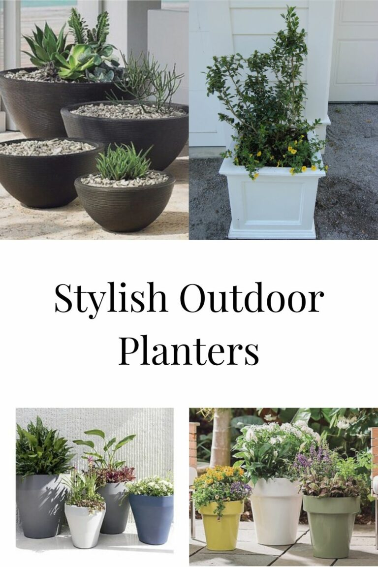 7 Best Planters That Will Add Style To Your Outdoor Space