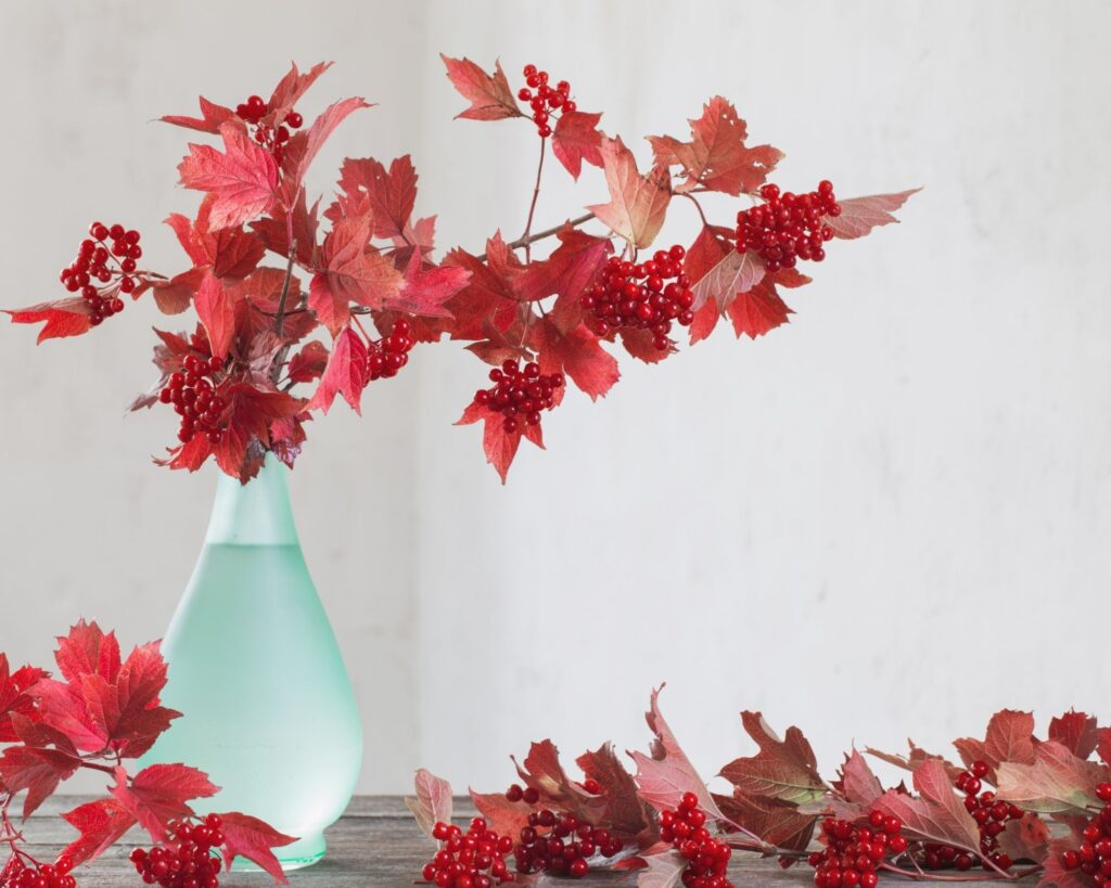 Red Maple:decorating ideas with tree branches