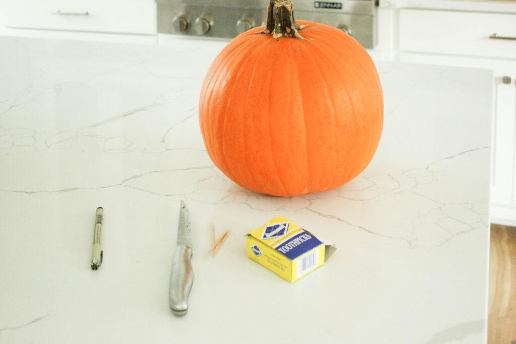 Supplies:How To Carve A Pumpkin Shark