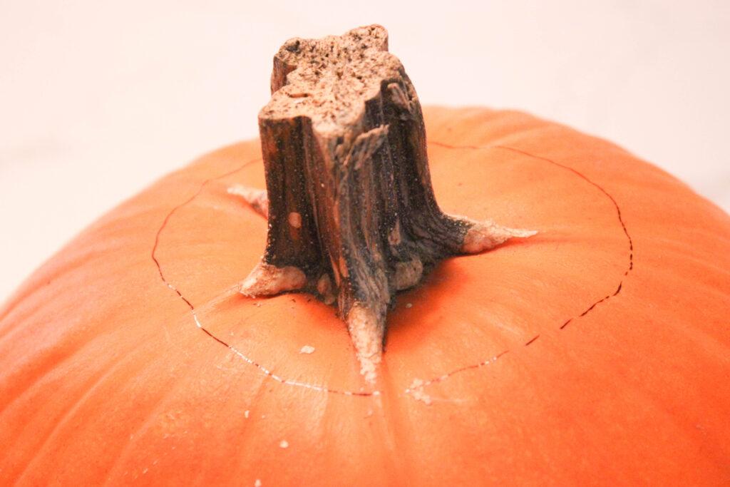 Cut the stem:How To Carve A Pumpkin Shark